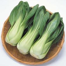 チンゲン菜 88円(税抜)
