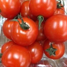 ミニトマト 155円(税抜)