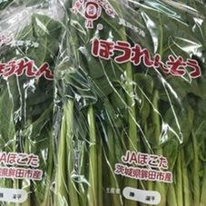 ほうれん草 155円(税抜)