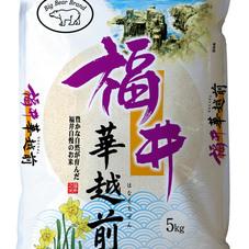 福井県 華越前5kg 1,480円(税抜)