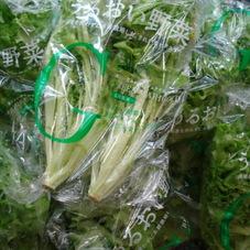 うるおい野菜(グリーンマリーゴールド) 198円(税抜)