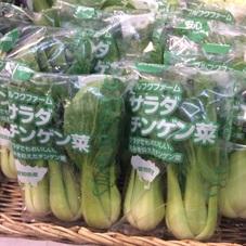 チンゲン菜 100円(税抜)