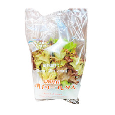 マルチリーフレタス(グリーン&レッド) 158円(税抜)