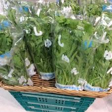 菊菜 98円(税抜)