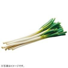 セブンファーム 深谷ねぎ 248円(税抜)