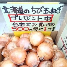 玉ねぎ 20円