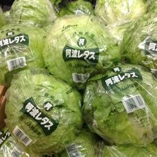 レタス 248円(税抜)