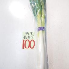 長ねぎ 100円