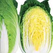 大玉 白菜1/2カット 98円(税抜)