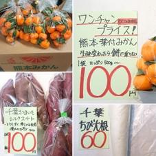 葉付きみかん 100円