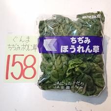 ちぢみほうれん草 158円