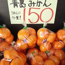 小粒みかん 150円