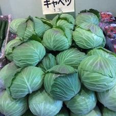 キャベツ 100円(税抜)