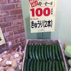 きゅうり 100円(税抜)