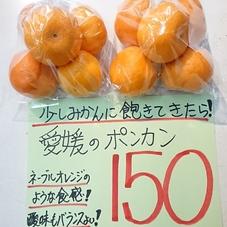 ポンカン 150円