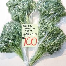 パセリ 100円