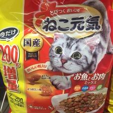 ねこ元気2.0kg 529円(税抜)