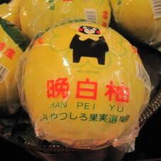 晩白柚 980円(税抜)