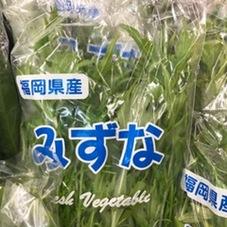 水菜 150円(税抜)