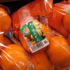 三ケ日みかん 398円(税抜)