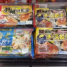 羽根つき餃子(オリジナル.チーズ).白湯スープ餃子 100円(税抜)