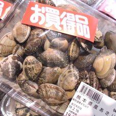 あさり貝 98円(税抜)