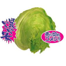 レタス 87円(税抜)