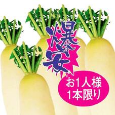 大根 77円(税抜)