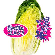 ハクサイ半切り 127円(税抜)