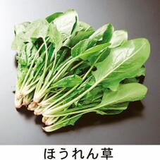 ほうれん草 89円(税抜)
