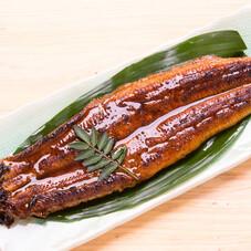 鰻蒲焼き 1,380円(税抜)