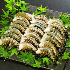 ブラックタイガー海老(解凍・養殖) 1,000円(税抜)