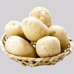 新馬鈴薯(2Lサイズ) 28円(税抜)