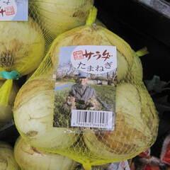 サラダ玉ねぎ 298円(税抜)