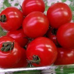 ミニトマト 157円(税抜)
