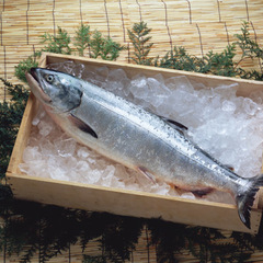 銀鮭(養殖・解凍) 191円