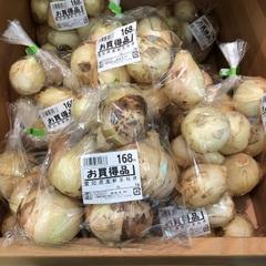 新玉ねぎ 168円(税抜)