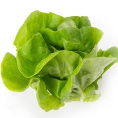 サラダ菜2個セット 168円(税抜)