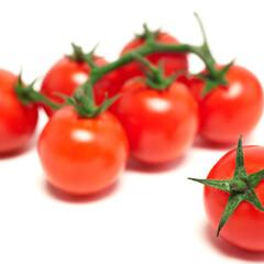 ミニトマト 84円