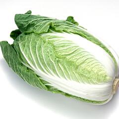 白菜 83円(税抜)