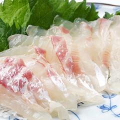 鯛刺身用ブロック 398円(税抜)