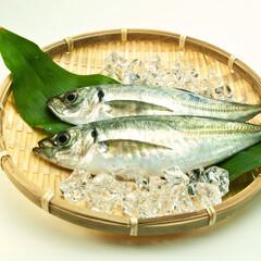 刺身用 生あじ 97円(税抜)