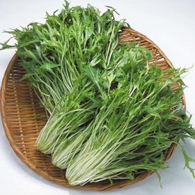 水菜 88円(税抜)