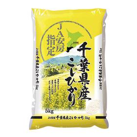 JA安房指定千葉県産こしひかり(5kg) 1,509円(税込)