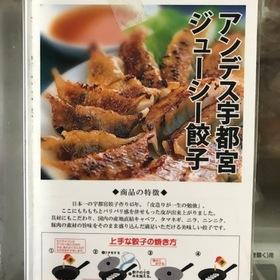 アンデス餃子 390円(税抜)