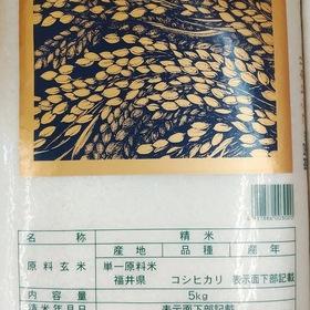 こしひかり5kg 1,880円(税抜)