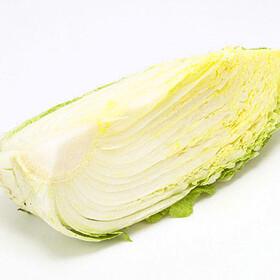 白菜 150円(税込)