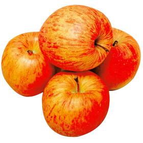 りんご 157円(税抜)