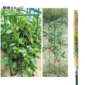 花と野菜のサポート支柱 548円(税抜)