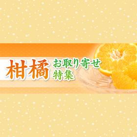 柑橘 お取り寄せ特集 価格なし
